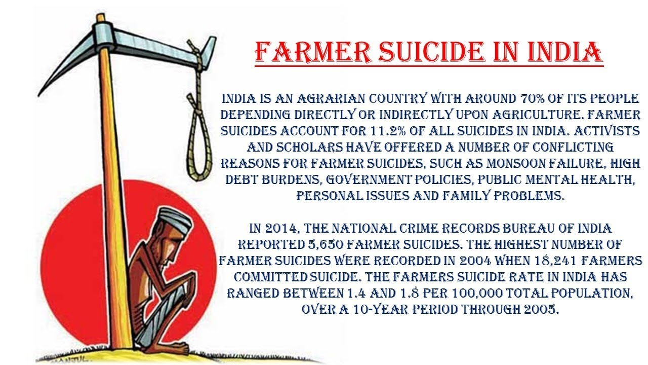 essay on farmers suiciding in india