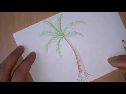 Palmiye Agaci Nasil Cizilir How To Draw A Palm Tree Youtube