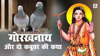 गोरखनाथ और दो कबूतर की कथा || गोरखनाथ का चमत्कार || गोरखनाथ की डब्बी || Latest Short Film 2020