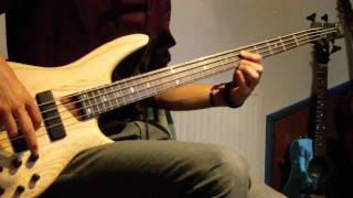 Red Hot Chili Peppers - Universally Speaking [Bass Cover]