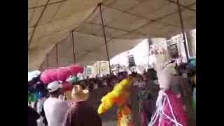 carnaval 2014 covadonga 0001