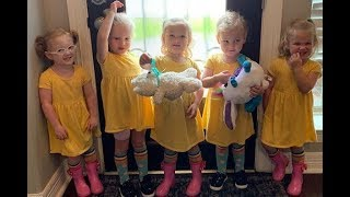 outdaughtered season 3 episode 4