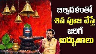 BILVA PATRA Mahatyam: బిల్వ దళం తో శివ పూజ చేస్తే జరిగే అద్భుతాలు, Importance of Bilva Patra