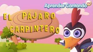 El pajaro carpintero - Canciones Infantiles de Aprender Cantando