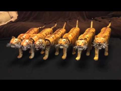 Dancing Tigers