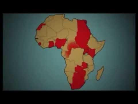 European Colonization in Africa