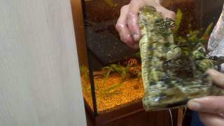 "Мойка аквариумного декора в ""белизне"""