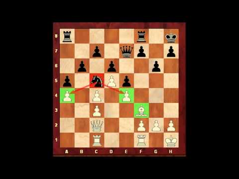 Chess for Beginners. How to Play with a Knight. Eugene Grinis. Chess