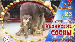 """Супер-шоу """"Индийские слоны"""" в нижнетагильском цирке"""
