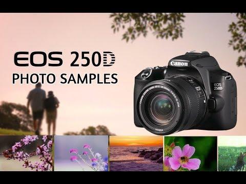 Canon EOS 250D/SL3 Photo Samples