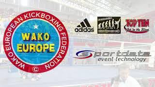 Frantisek Potuzak v Nikola Lazarevic WAKO European Championships 2017