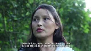 Gambar cover DARJEELING - INDE Interview de Binita Rai (FR)