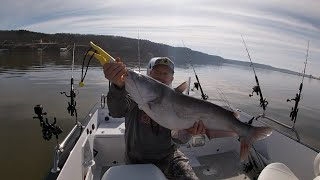 Fishing for Blue Catfish on drops with slow current.