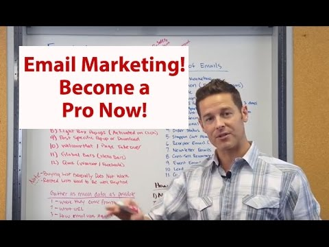 Email Marketing, Grow a List, Segmentation, Automation! John Lincoln, Ignite Visibility