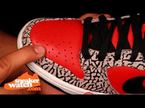 "Nike Dunk SB Low ""Supreme"" 2012 Review"