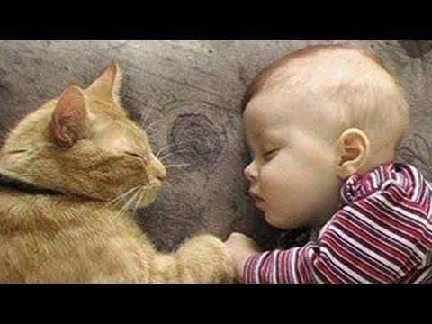 Bebes Durmiendo Con Sus Mascotas ¡Te Vas A Morir De La Ternura!