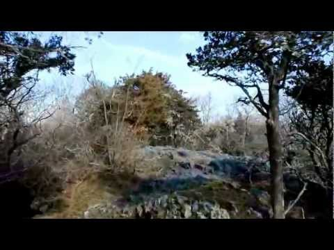 "Norman Bird Sanctuary, Part 1, ""Lookout Trail"" - February 2, 2013"