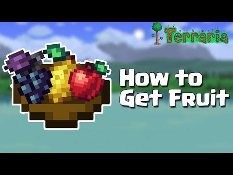 Terraria 1.4 | Fruit Guide - How to get them (2020 TUTORIAL)