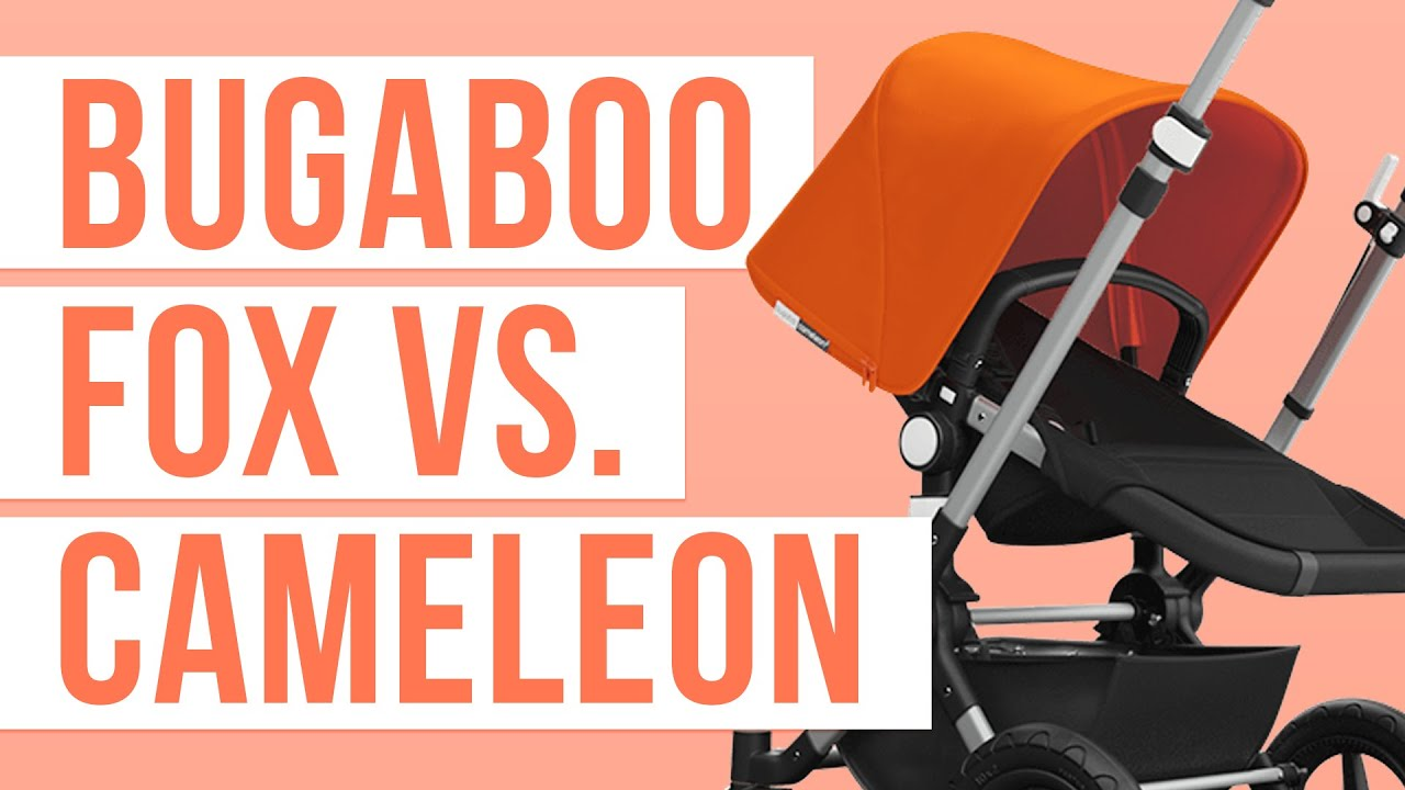Bugaboo Cameleon 3 Maximum Weight The Bugaboo Fox 2018 Vs Bugaboo Cameleon 3 Stroller