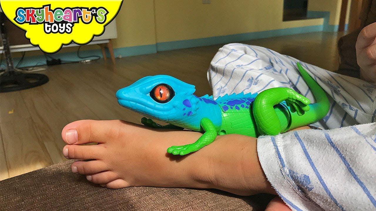 Gecko Lizard Inside Toddler S Pajama Skyheart And Daddy