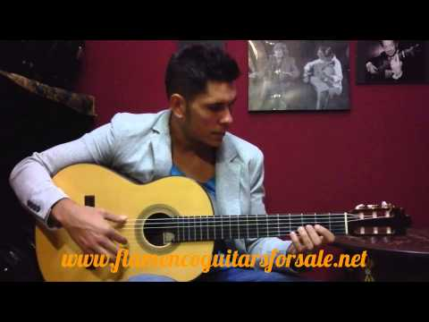 Francisco Barba Brazilian rosewood 2000 flamenco guitar for sale