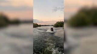 Zambia, l'ippopotamo insegue la barca dei turisti: la sua velocità in acqua è impressionante
