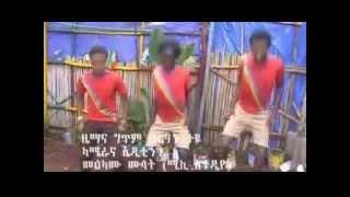birhanu new music