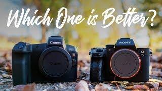 Canon EOS R vs Sony a7III - QUICKEST COMPARISON EVER!!