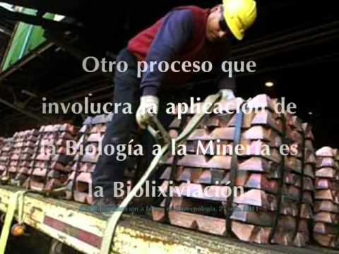 Biolixiviación, U de Santiago de Chile, INTROINGBIO 2011, Garcia, Hernandez, Mac-Iver, Yanten