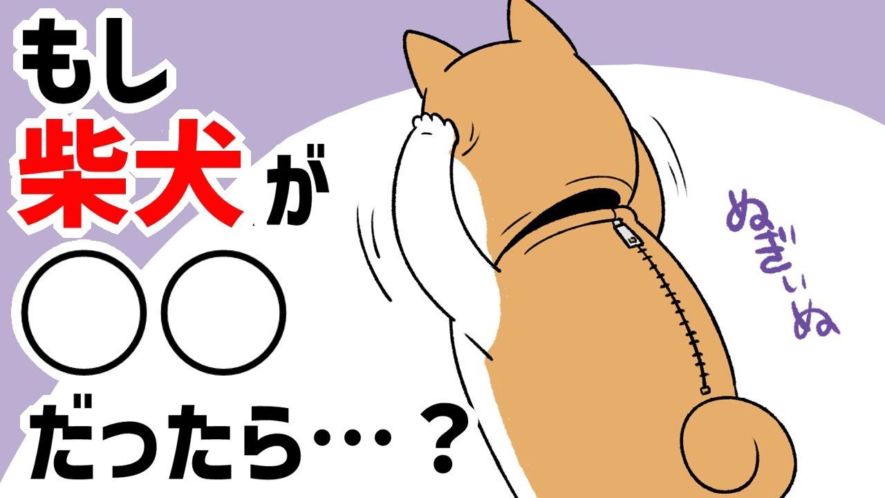 【犬猫まんが】もし柴犬が〇〇だったら…!?