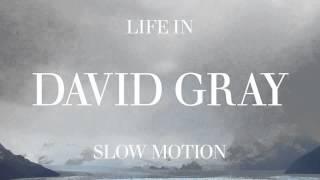 "David Gray - ""Disappearing World"""