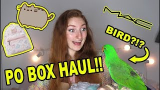 PO BOX HAUL & UNBOXING! FANMAIL, PR, PUSHEEN & MORE | Pretty Pastel Parcels #1