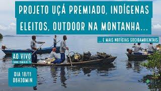 Mangue premiado, eleições indígenas e mais notícias socioambientais - VERDE MAR #94