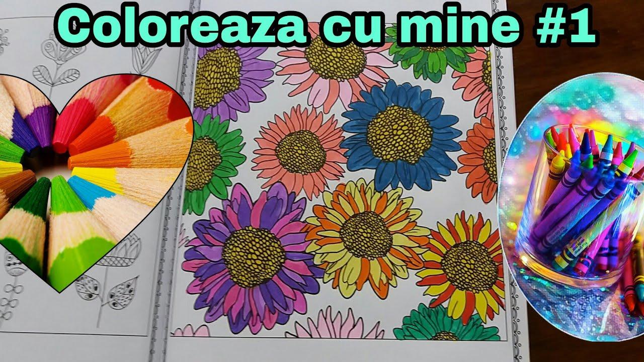 Coloreaza Cu Alina 1 Flori Si Pasari Carte De Colorat
