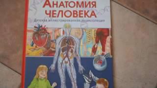 Анатомия человека. Обзор детской энциклопедии
