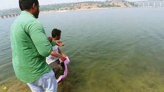 Big Rohu Fish Catch Near Reservoir Gates Amazing Video Best Fishing video