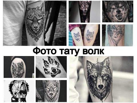 Фото тату волк - коллекция рисунков и факты для сайта Tattoo-photo.ru