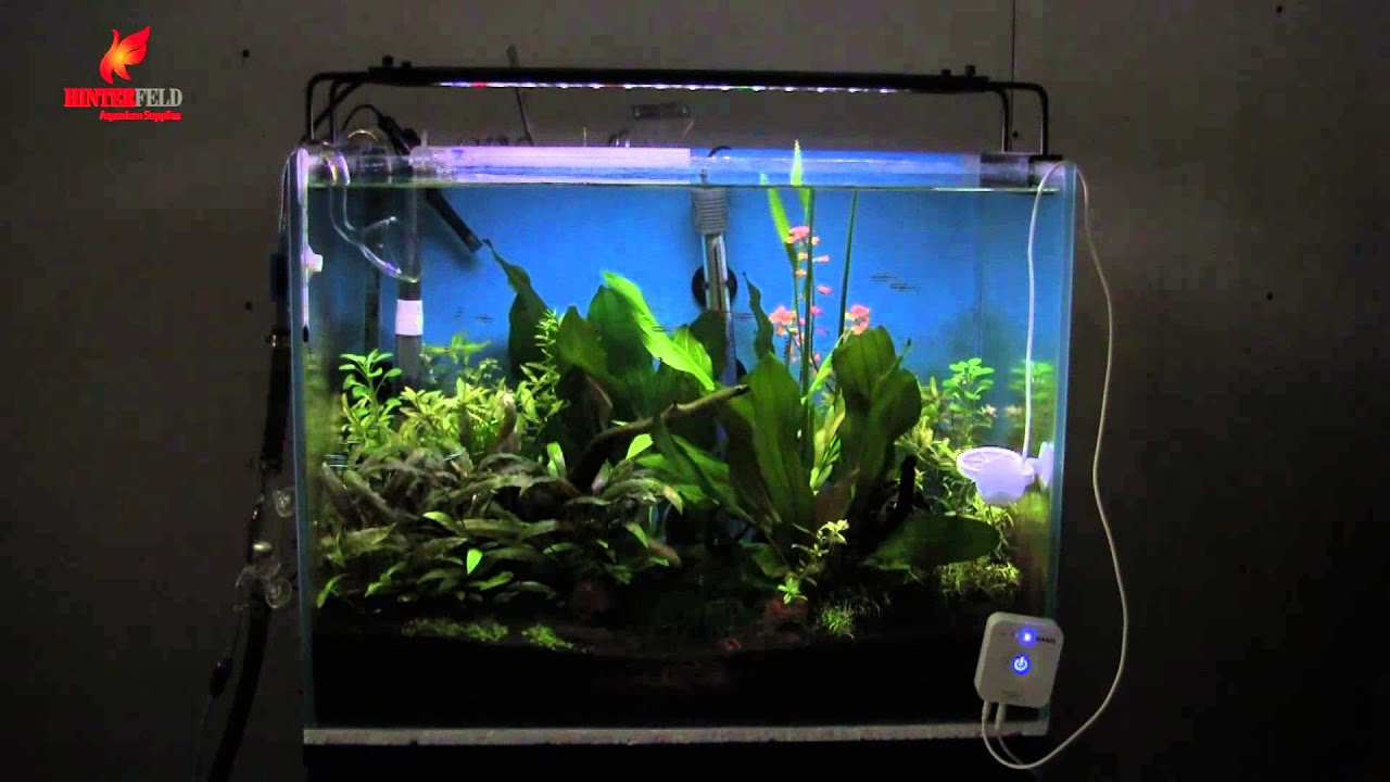 hinterfeldhk nemo aqua fresh led planting lamp aquarium aquascape