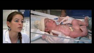 Au cœur de la maternité de l'hôpital Necker - Les docs de votre vie