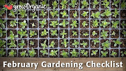 February Gardening Checklist - 10 Tips To Help Get Your Organic Garden Ready For Spring