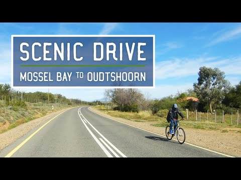 Scenic Drive in South Africa (1.5 Hours) - Oudtshoorn to Mossel Bay with Relaxing Music