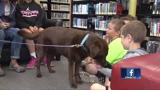 Therapy dog keeps kids reading