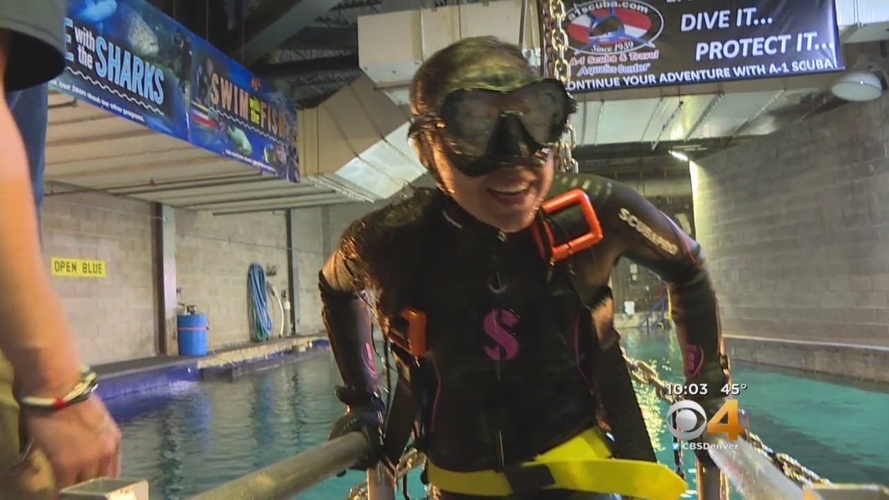 Colorado Students Swim With Sharks: 'Right In Front Of My Face'