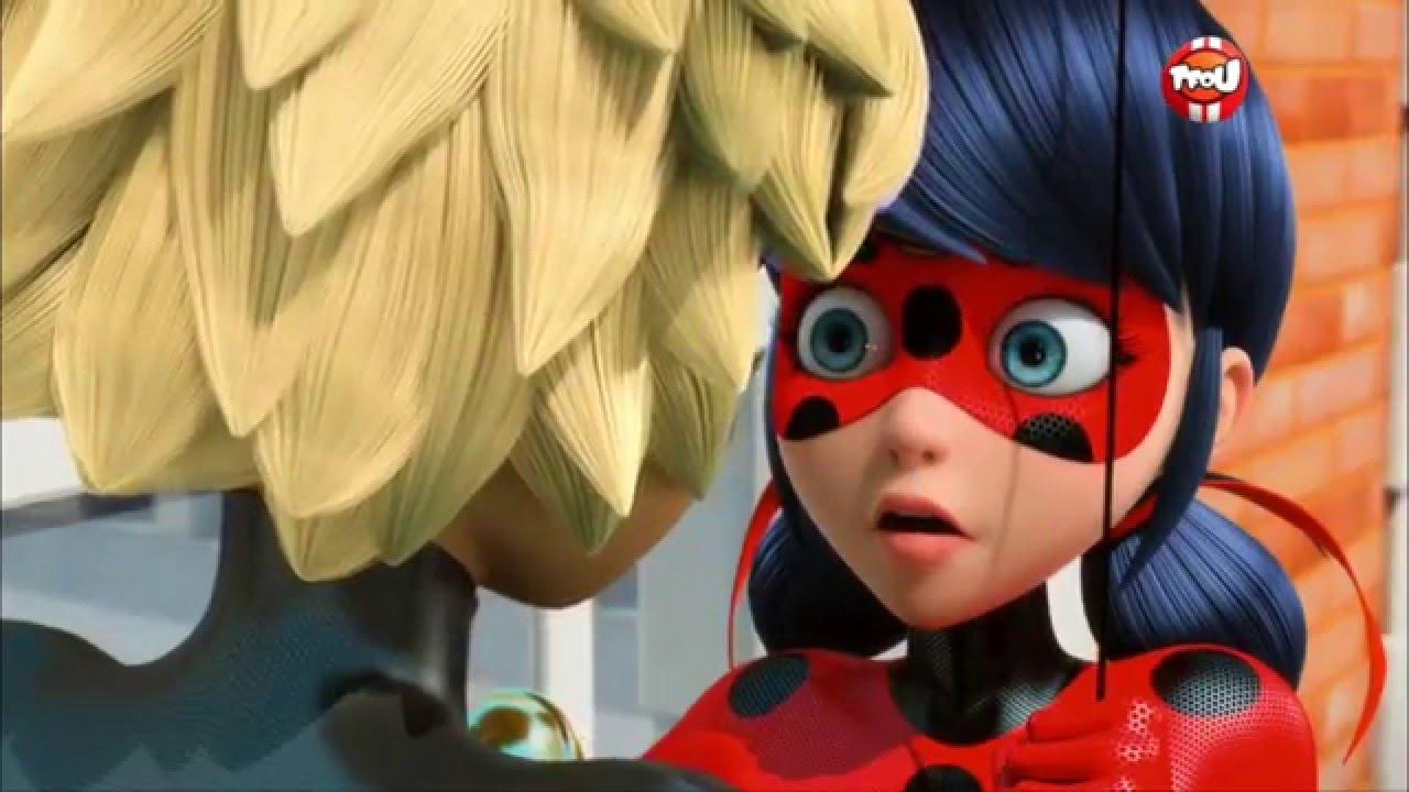 Chat Noir Ladybug