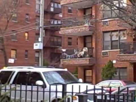 Far Rockaway Queens NY