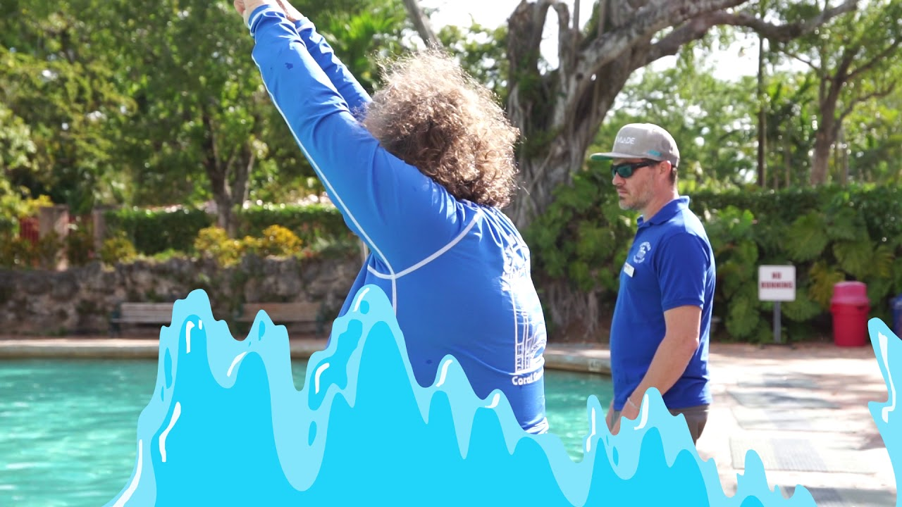 Venetian Pool Swim Lessons Youtube