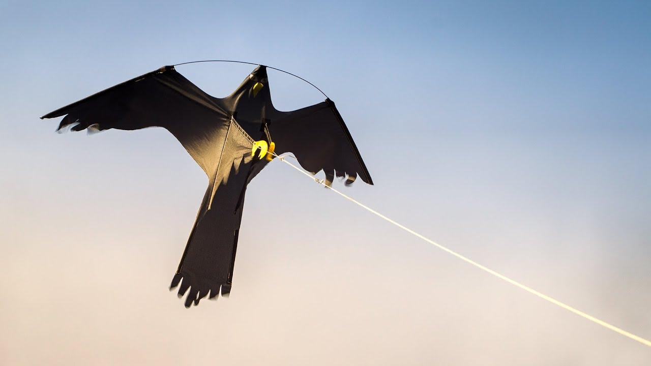 Utroligt Skræmmefugl | Fugleskræmmer | Drage | Undgå fugleklatter og IF74