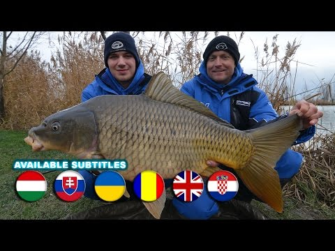 Coldwater Feeder Fishing for Carp part 17.  Only the Blue!