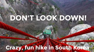 Crazy bridge in South Korea, our best hike in Asia (so far)