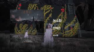 능소화(Trumpet Creeper) - 안예은(AHN YEEUN) Official Audio